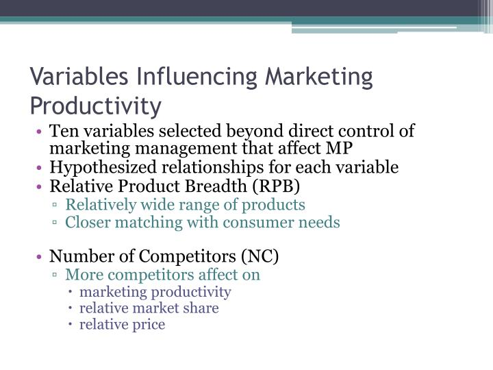 Variables Influencing Marketing Productivity