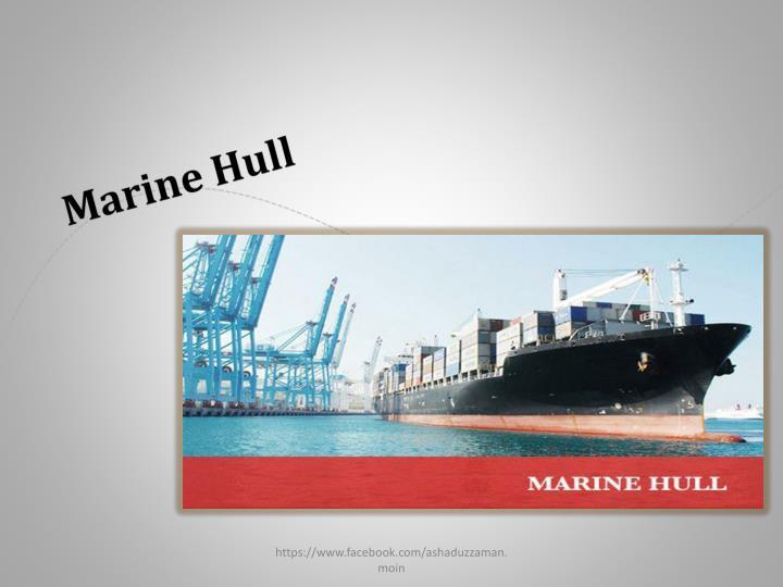 Marine Hull