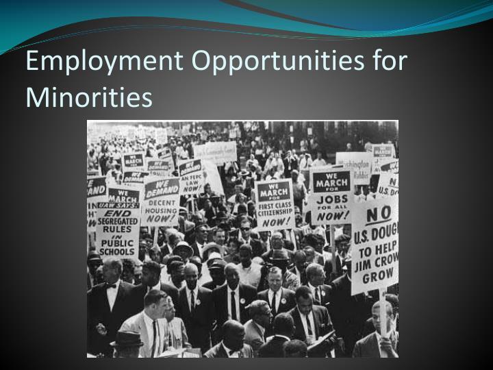 Employment Opportunities for Minorities