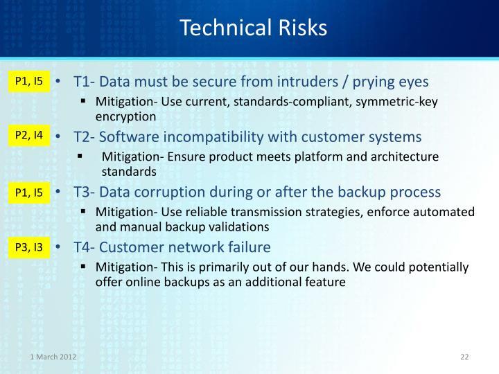 Technical Risks