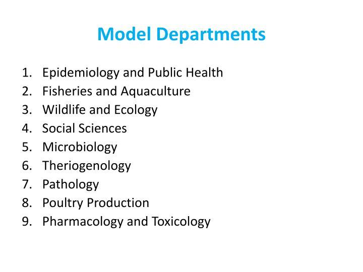 Model Departments