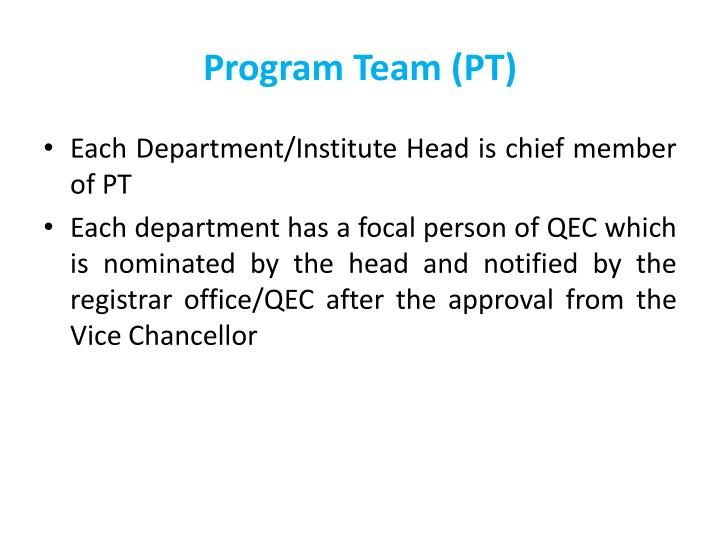 Program Team (PT)