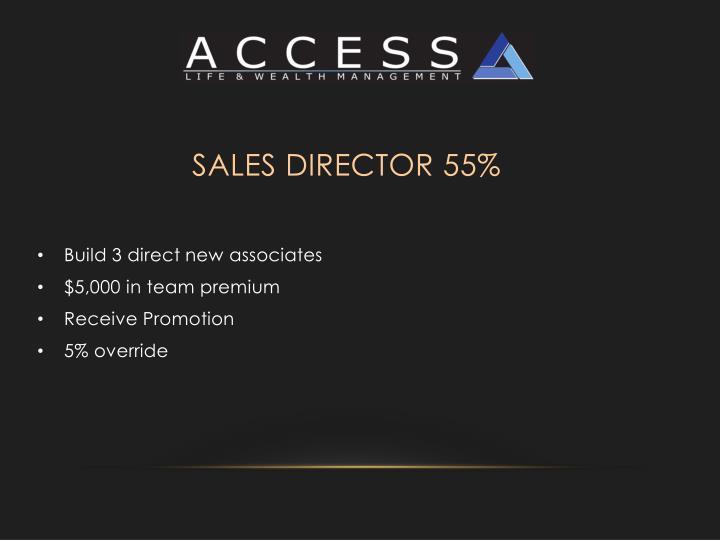 Sales Director 55%