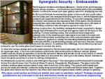 synergistic security embraceable