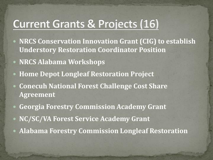 Current Grants & Projects (16)