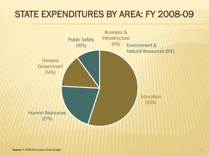 STATE EXPENDITURES BY AREA: FY 2008-09