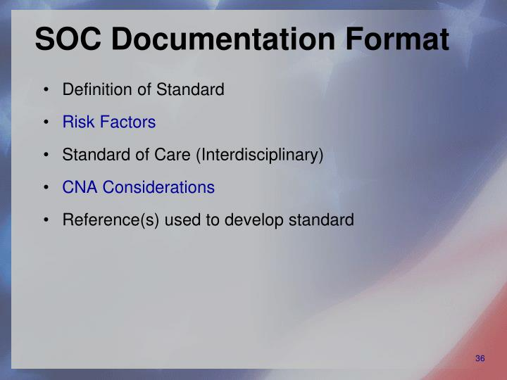 SOC Documentation Format