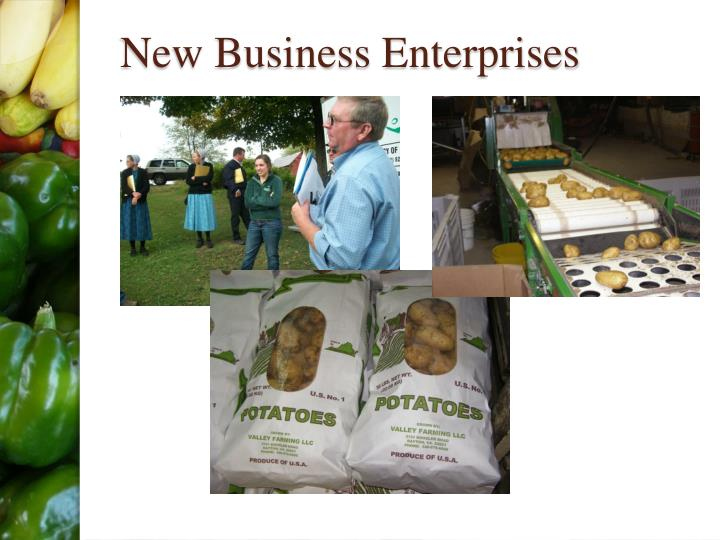New Business Enterprises