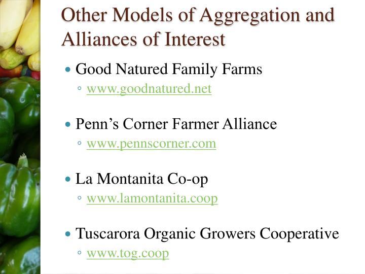 Other Models of Aggregation and Alliances of Interest