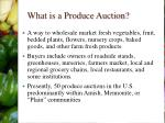 what is a produce auction