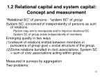 1 2 relational capital and system capital concept and measurement