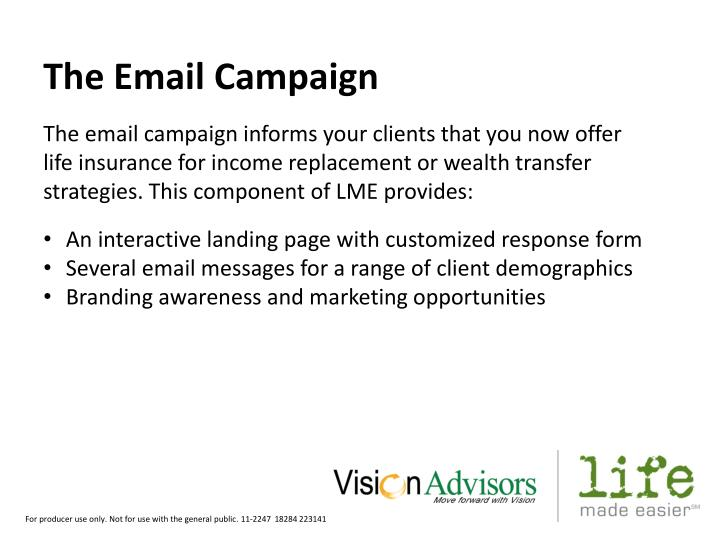 The Email Campaign