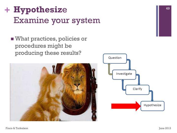 Hypothesiz