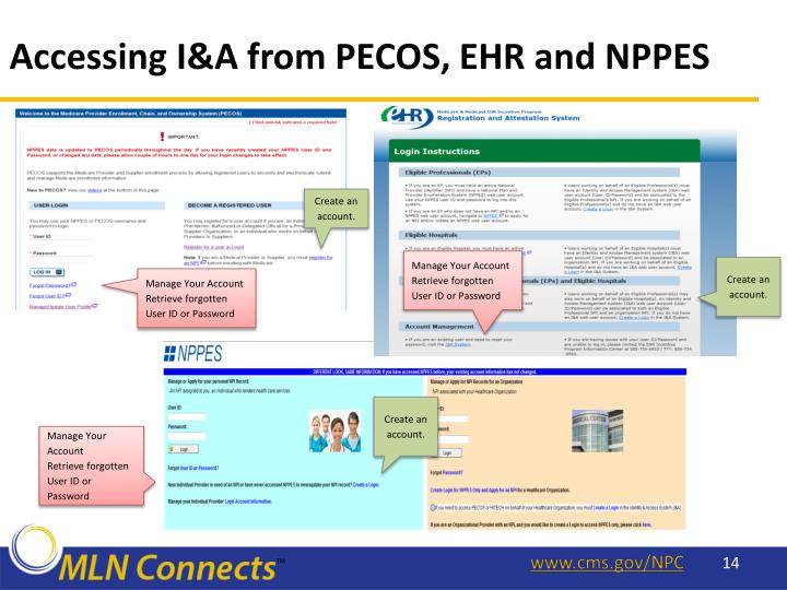 Accessing I&A from PECOS, EHR and NPPES