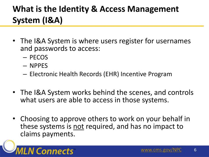 What is the Identity & Access Management System (I&A)