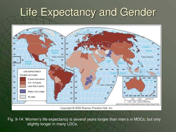 Life Expectancy and Gender