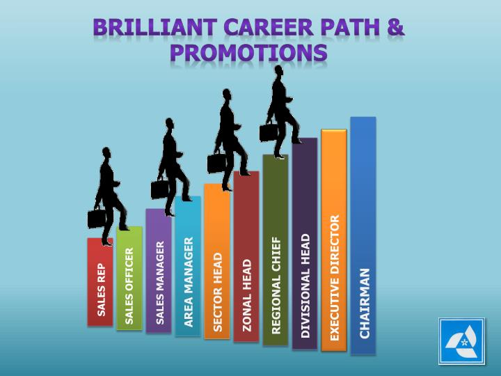 BRILLIANT CAREER PATH