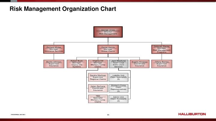 Risk Management Organization Chart