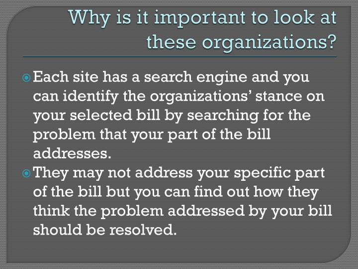 Why is it important to look at these organizations?