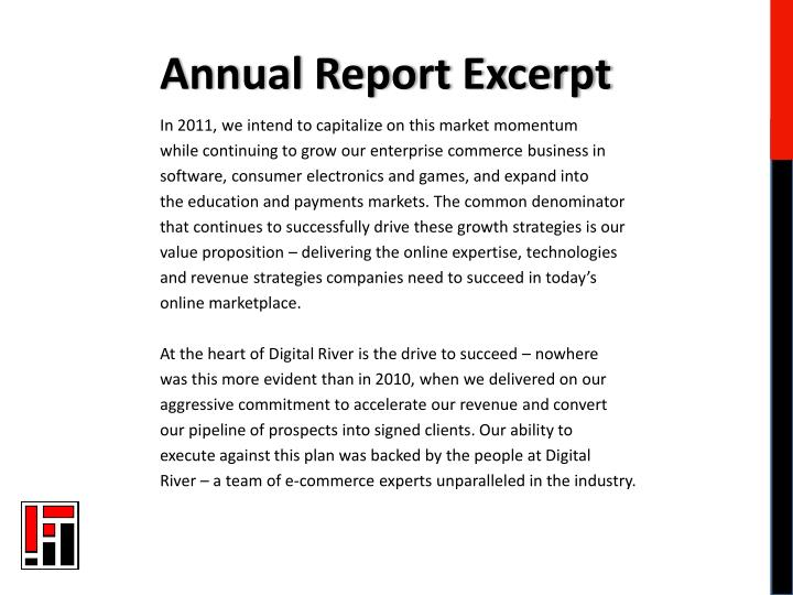 Annual Report Excerpt
