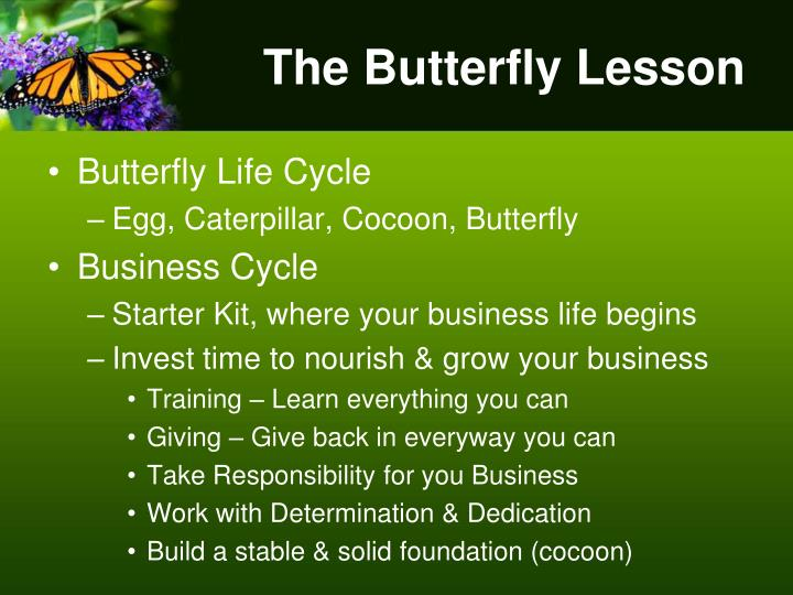 The Butterfly Lesson
