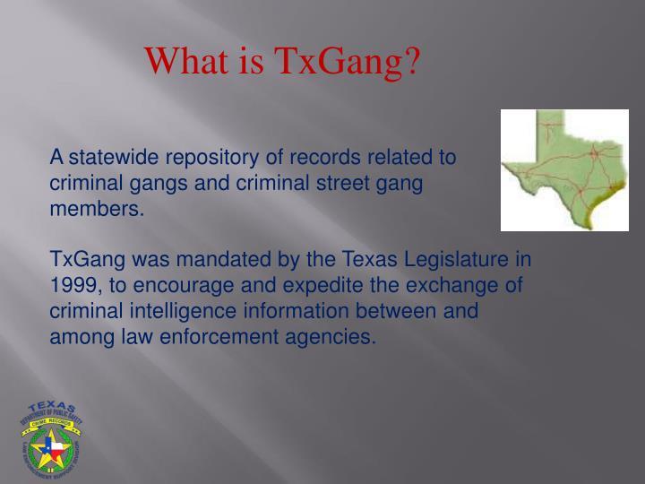 What is TxGang?
