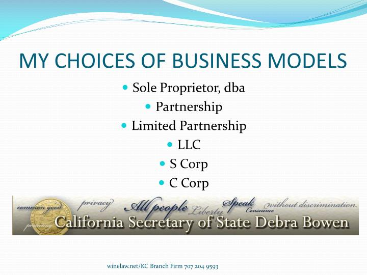 MY CHOICES OF BUSINESS MODELS