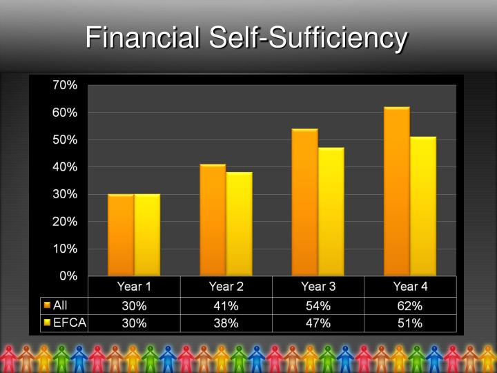 Financial Self-Sufficiency