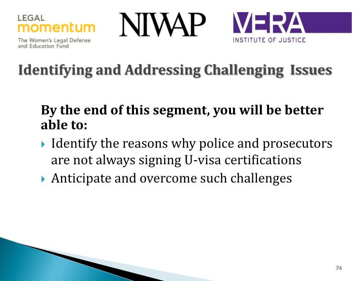 Identifying and Addressing Challenging  Issues