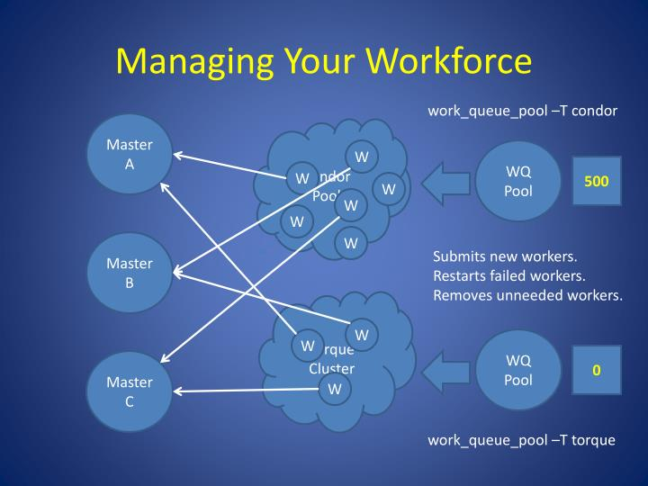 Managing Your Workforce