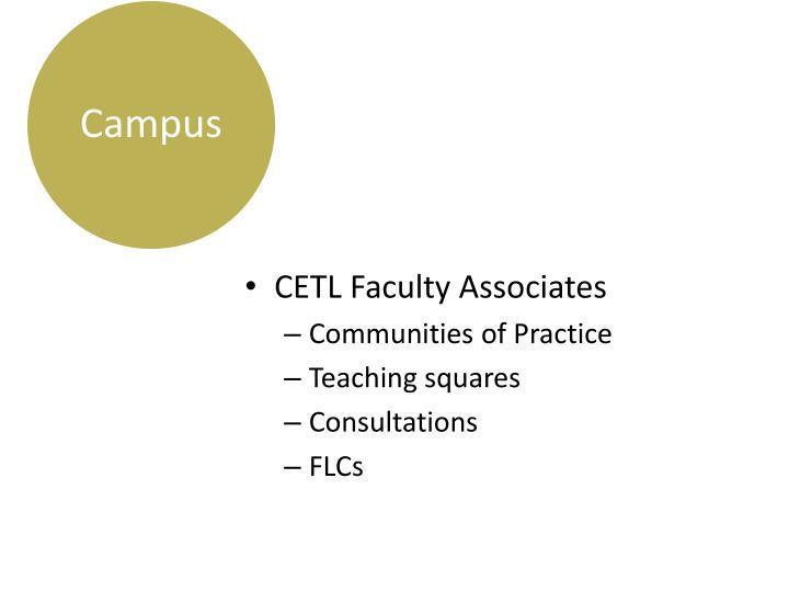 CETL Faculty Associates