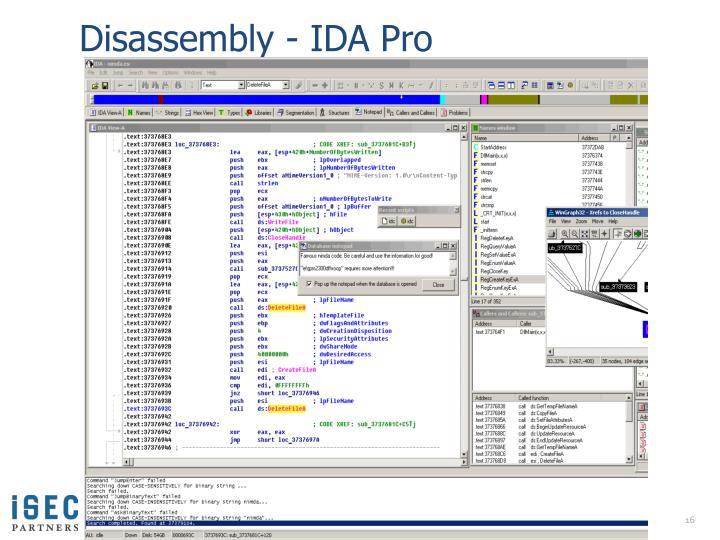 Disassembly - IDA Pro