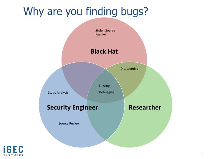 Why are you finding bugs?