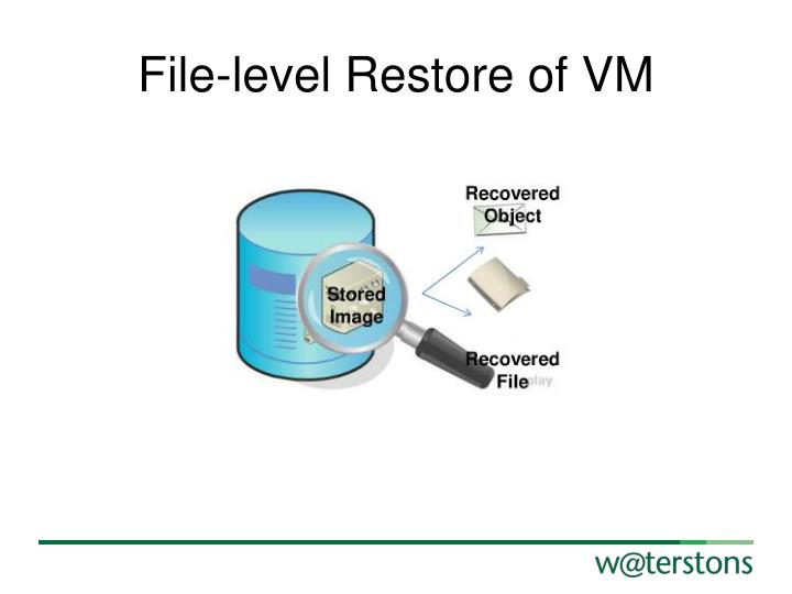 File-level Restore of VM