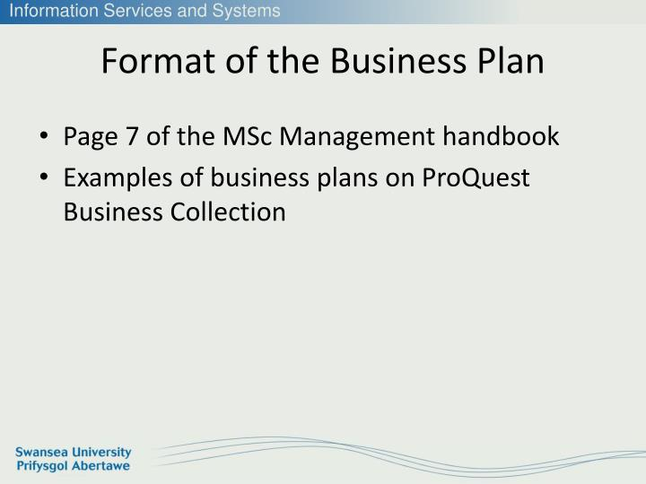 Format of the Business Plan