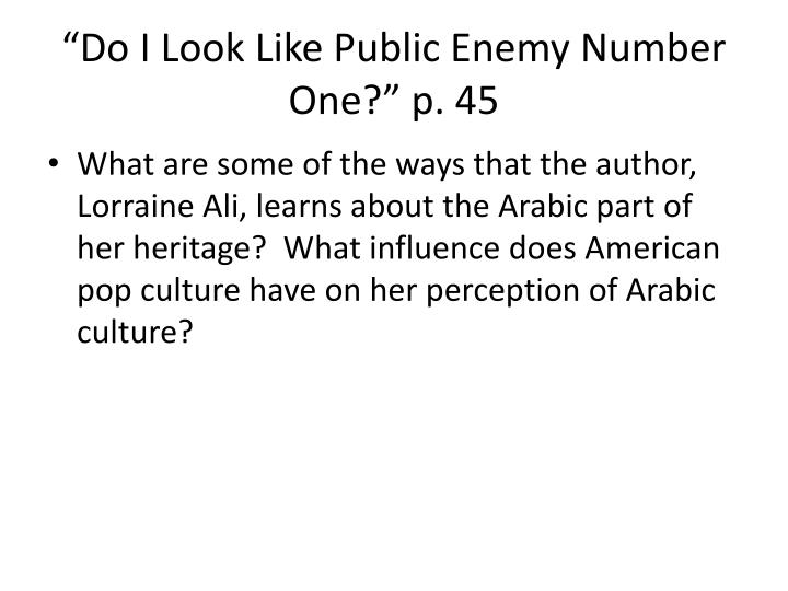 """Do I Look Like Public Enemy Number One?"" p. 45"