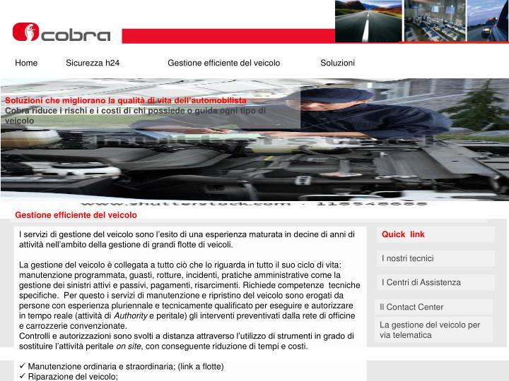 HomeSicurezza h24Gestione efficiente del veicolo Soluzioni