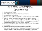 maritime danube ports opportunities