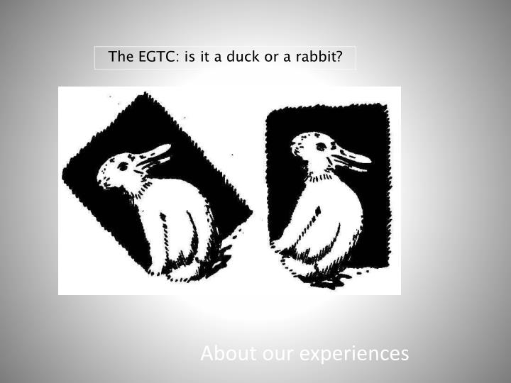 The EGTC: is