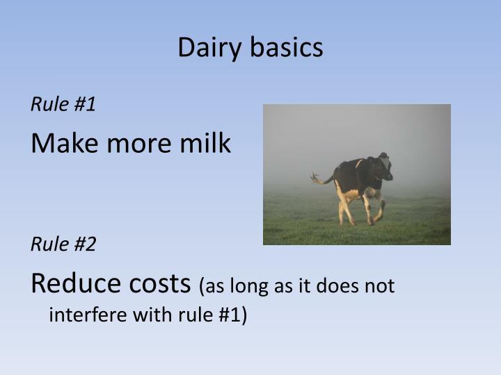 Dairy basics