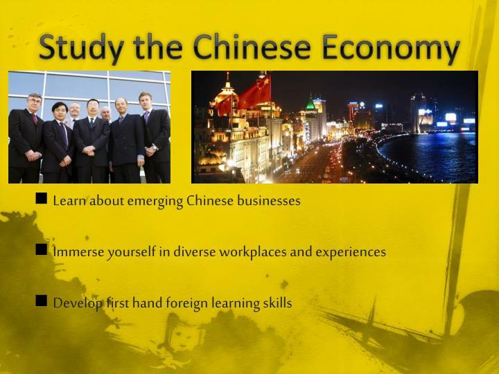 Study the Chinese Economy