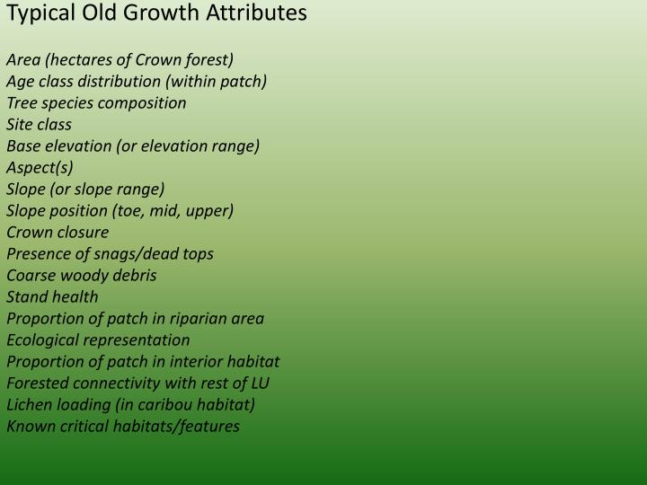 Typical Old Growth Attributes