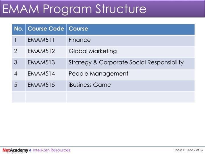 EMAM Program Structure