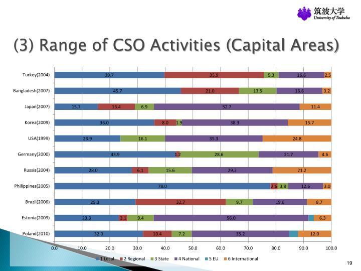 (3) Range of CSO Activities (Capital Areas)
