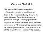 canada s black gold