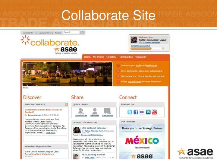 Collaborate Site