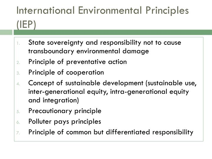 the principle of common but differentiated responsibilities politics essay Start studying global environmental politics the principle that the price of oil it includes common but differentiated responsibilities and various.