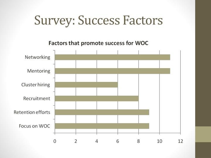 Survey: Success Factors