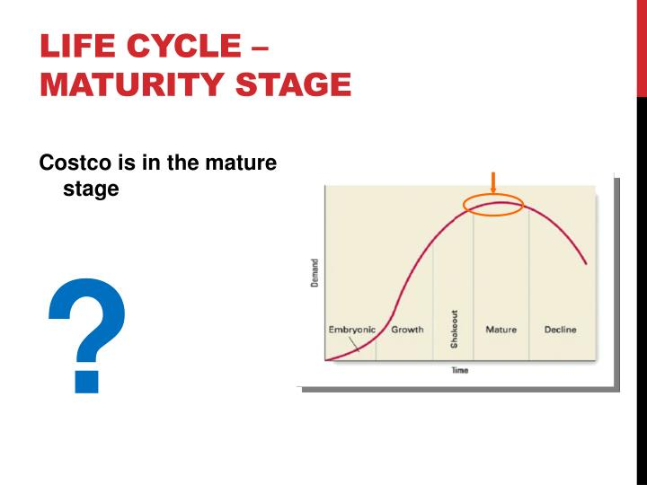 Life Cycle – Maturity Stage