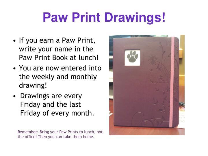 Paw Print Drawings!